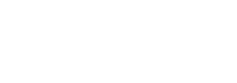 Domino Building Services